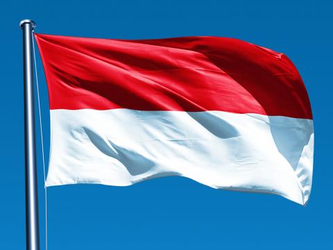 indonesiaflagpicture4